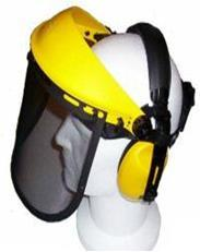 17029 Face Guard with Ear Muff  3 pcs