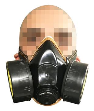 3134 Dust and Particle Filter Mask     C50